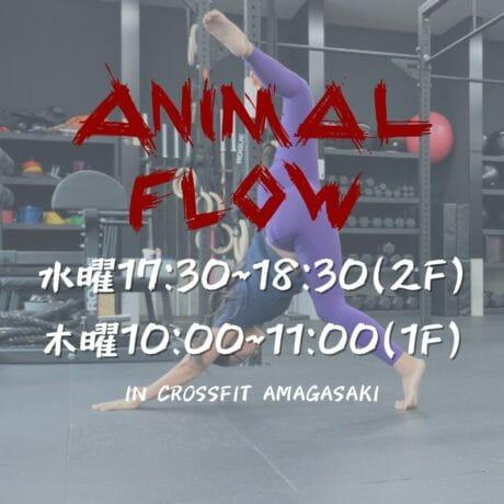 Animal Flowクラス開始のお知らせ